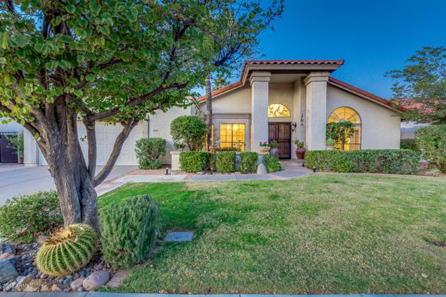 10462 E Bella Vista Drive, Scottsdale, AZ 85258 (MLS #5712483) :: Lifestyle Partners Team