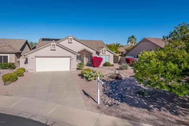 6016 E Scafell Circle, Mesa, AZ 85215 (MLS #5712497) :: Lifestyle Partners Team