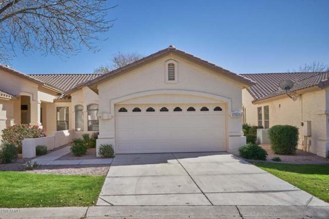 23821 S Harmony Way, Sun Lakes, AZ 85248 (MLS #5712500) :: Lifestyle Partners Team