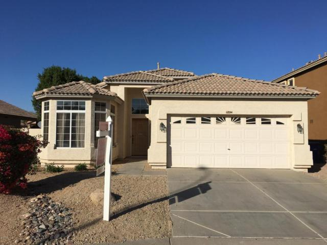1854 W Musket Way, Chandler, AZ 85286 (MLS #5712517) :: Sibbach Team - Realty One Group