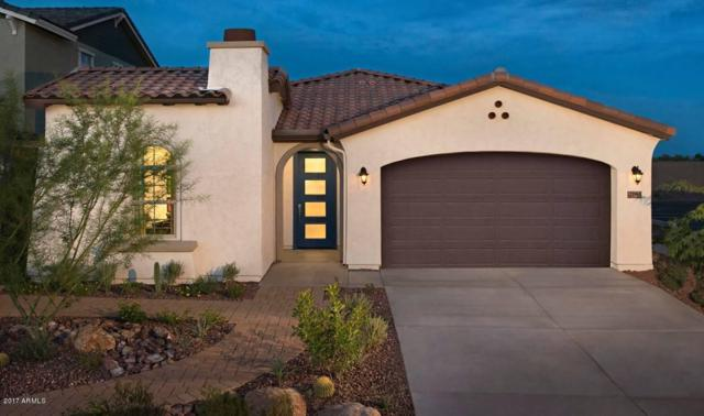 21965 N 97TH Glen, Peoria, AZ 85383 (MLS #5712688) :: Sibbach Team - Realty One Group