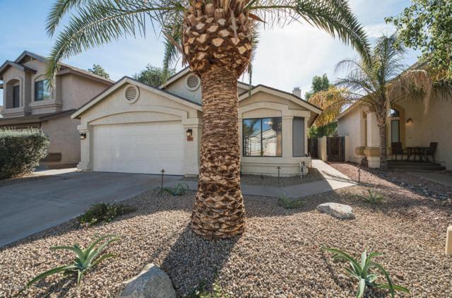 757 E Rosemonte Drive, Phoenix, AZ 85024 (MLS #5712713) :: Sibbach Team - Realty One Group
