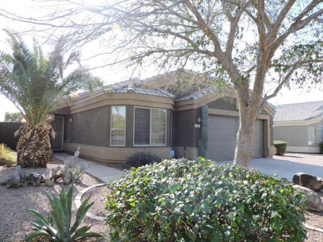 1567 W Kesler Lane, Chandler, AZ 85224 (MLS #5712716) :: Sibbach Team - Realty One Group