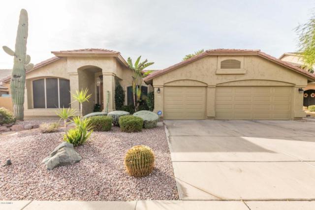 4031 E Robin Lane, Phoenix, AZ 85050 (MLS #5712798) :: The Pete Dijkstra Team