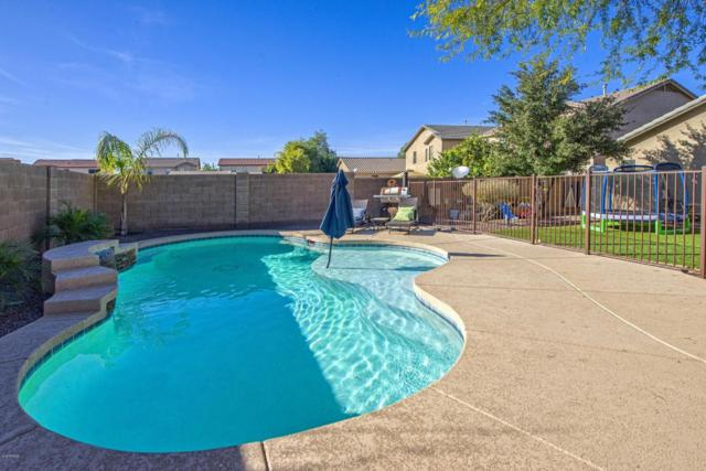 12451 W El Nido Lane, Litchfield Park, AZ 85340 (MLS #5712914) :: The Everest Team at My Home Group