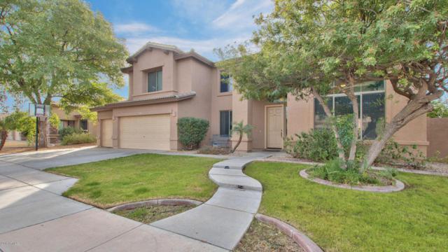 9903 E Meseto Avenue, Mesa, AZ 85209 (MLS #5712916) :: The Kenny Klaus Team