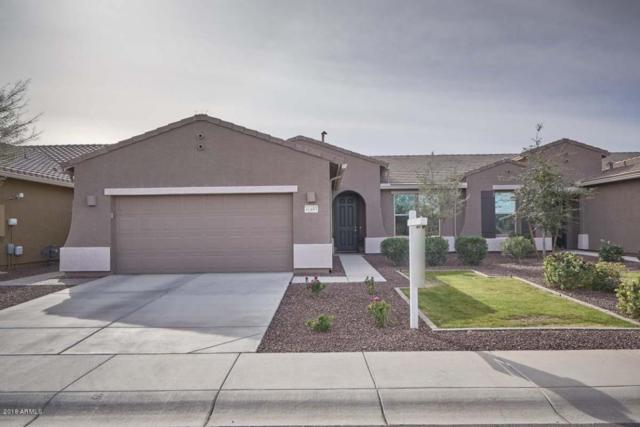 41693 W Summer Wind Way, Maricopa, AZ 85138 (MLS #5712934) :: Yost Realty Group at RE/MAX Casa Grande