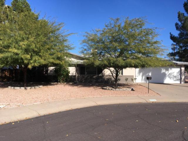 2132 W Shady Glen Avenue, Phoenix, AZ 85023 (MLS #5712977) :: Yost Realty Group at RE/MAX Casa Grande