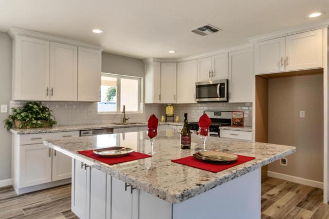 613 E Loma Lane, Phoenix, AZ 85020 (MLS #5713393) :: Yost Realty Group at RE/MAX Casa Grande