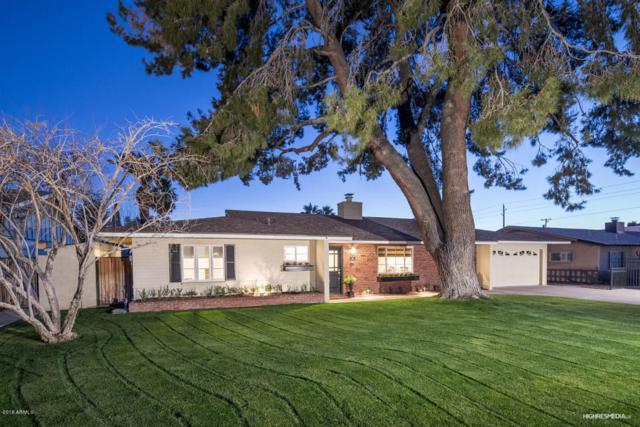 709 E Hayward Avenue, Phoenix, AZ 85020 (MLS #5713400) :: My Home Group