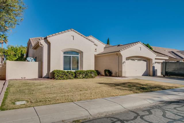 1870 E Laredo Place, Chandler, AZ 85225 (MLS #5713459) :: The Everest Team at My Home Group