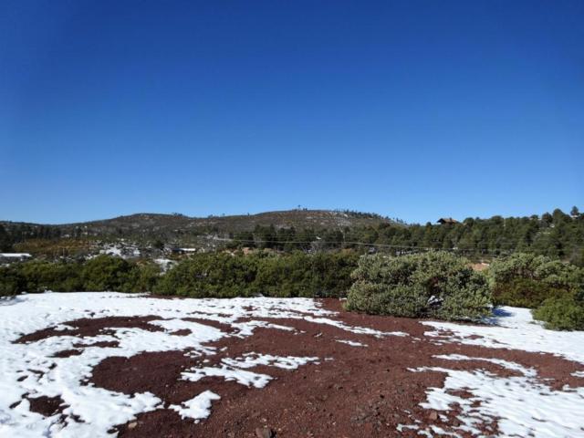 6241 Apache Trail, Show Low, AZ 85901 (MLS #5713604) :: The Garcia Group @ My Home Group