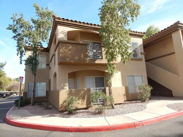 600 W Grove Parkway #2048, Tempe, AZ 85283 (MLS #5713717) :: Brett Tanner Home Selling Team