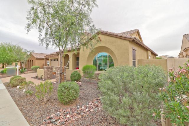 18271 W Desert Trumpet Road, Goodyear, AZ 85338 (MLS #5714291) :: Occasio Realty