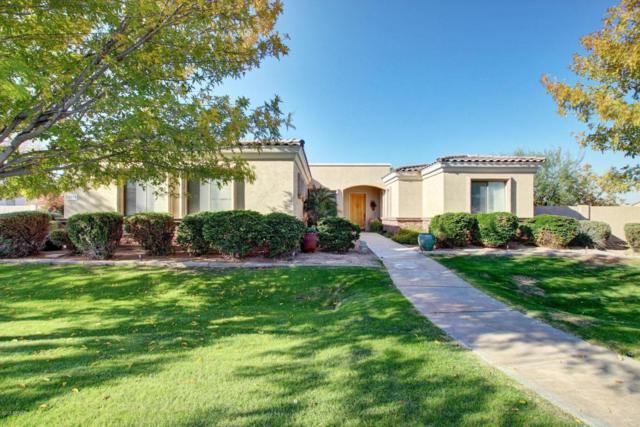8016 S 28TH Place, Phoenix, AZ 85042 (MLS #5714305) :: Occasio Realty