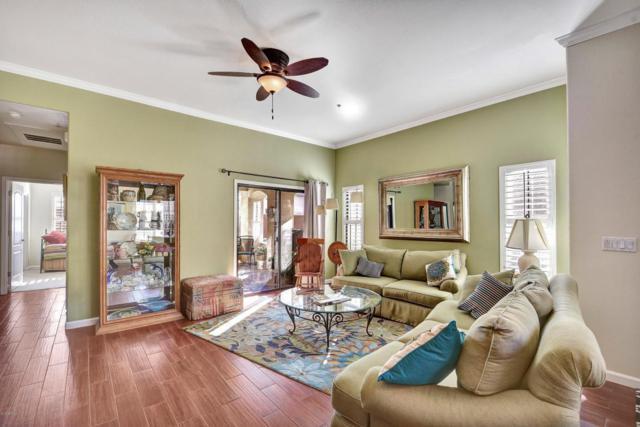 295 N Rural Road #121, Chandler, AZ 85226 (MLS #5714490) :: 10X Homes