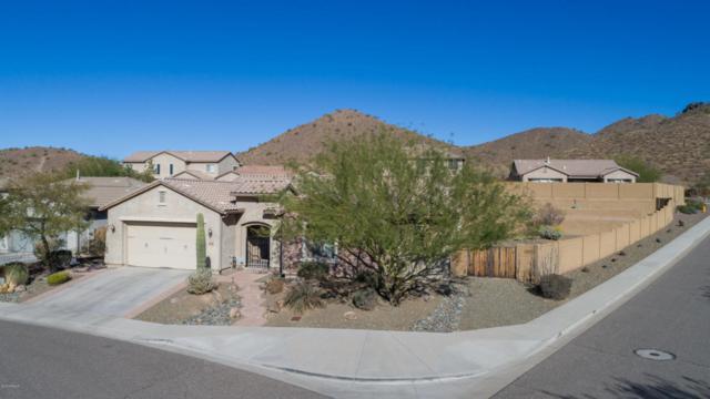 1604 W White Feather Lane, Phoenix, AZ 85085 (MLS #5714702) :: The Laughton Team