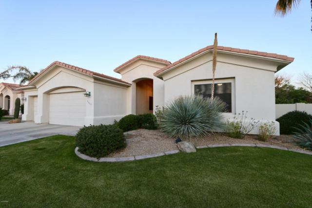 9667 N 117TH Way, Scottsdale, AZ 85259 (MLS #5714799) :: Occasio Realty