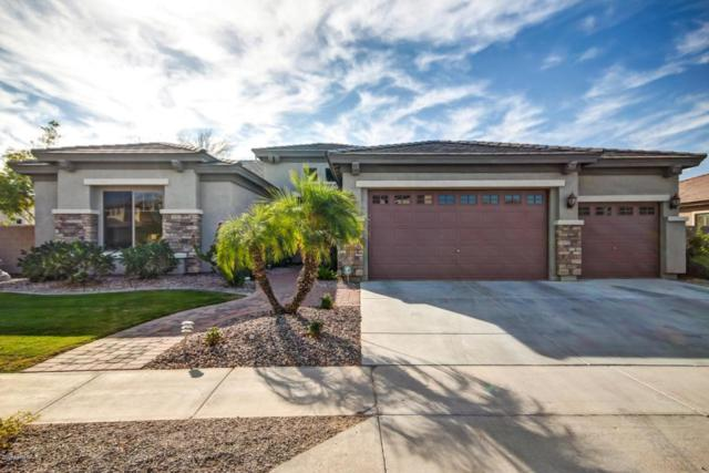 8559 W Northview Avenue, Glendale, AZ 85305 (MLS #5714857) :: Yost Realty Group at RE/MAX Casa Grande