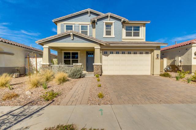 10604 E Durant Drive, Mesa, AZ 85212 (MLS #5714905) :: The Everest Team at My Home Group