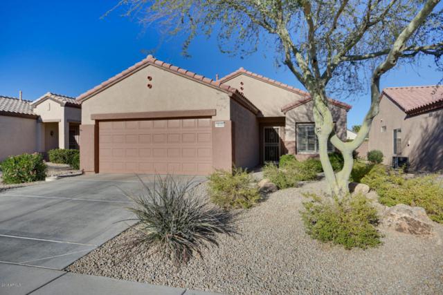 18405 N Gila Springs Drive, Surprise, AZ 85374 (MLS #5714970) :: Yost Realty Group at RE/MAX Casa Grande