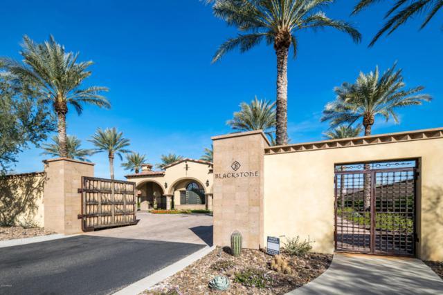 31039 N 118TH Lane, Peoria, AZ 85383 (MLS #5715001) :: My Home Group