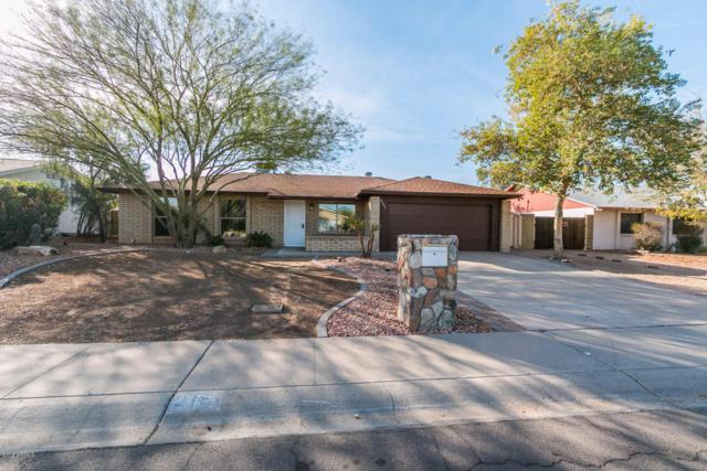 2151 W Oraibi Drive, Phoenix, AZ 85027 (MLS #5715063) :: Yost Realty Group at RE/MAX Casa Grande