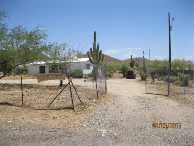 39805 N New River Road, Phoenix, AZ 85086 (MLS #5715520) :: Keller Williams Realty Phoenix