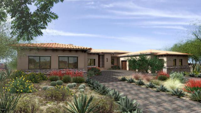 25108 N 107TH Way, Scottsdale, AZ 85255 (MLS #5715537) :: Occasio Realty
