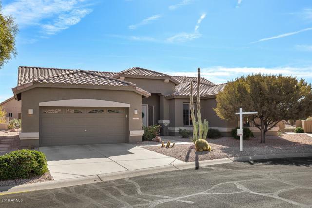 7307 E Texas Ebony Drive, Gold Canyon, AZ 85118 (MLS #5716058) :: Kortright Group - West USA Realty