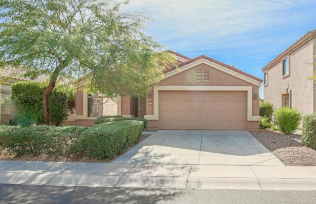 23793 W Tonto Street, Buckeye, AZ 85326 (MLS #5716080) :: Yost Realty Group at RE/MAX Casa Grande