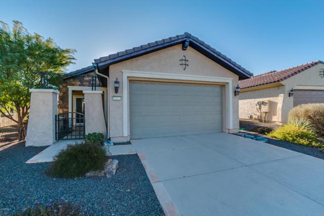 21223 N 262ND Drive, Buckeye, AZ 85396 (MLS #5716087) :: Kortright Group - West USA Realty