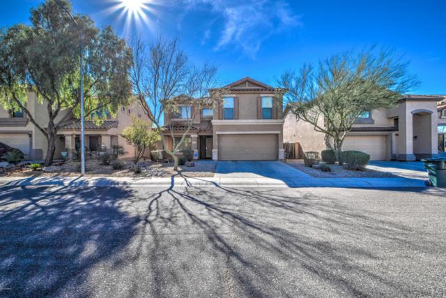 2423 W Lucia Drive, Phoenix, AZ 85085 (MLS #5716122) :: Occasio Realty