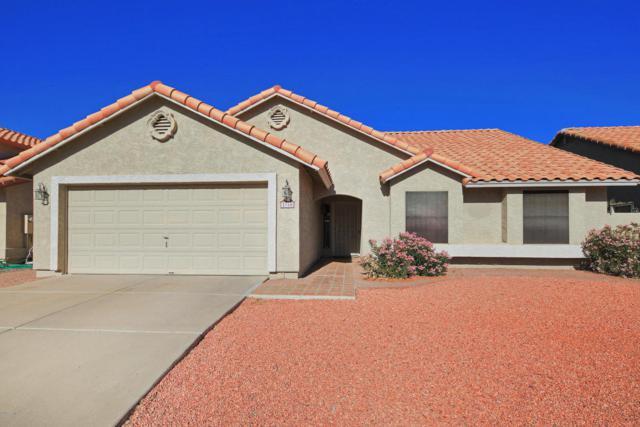 2750 E Thunderhill Place, Phoenix, AZ 85048 (MLS #5716249) :: Yost Realty Group at RE/MAX Casa Grande