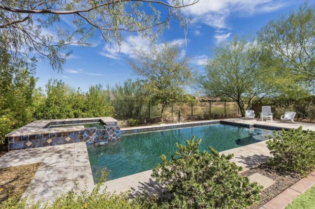 3732 W Whitehawk Court, Anthem, AZ 85086 (MLS #5716447) :: The Everest Team at My Home Group