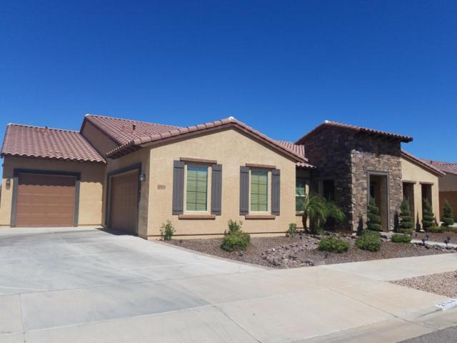 21144 E Sunset Drive, Queen Creek, AZ 85142 (MLS #5716496) :: Kortright Group - West USA Realty