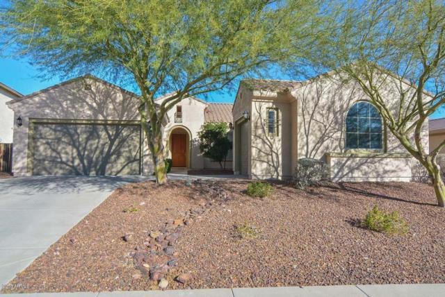 6896 W Dale Lane, Peoria, AZ 85383 (MLS #5716529) :: The Laughton Team