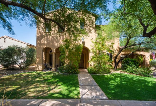 20421 N 93rd Place, Scottsdale, AZ 85255 (MLS #5716686) :: RE/MAX Excalibur