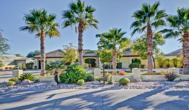 5017 W Electra Lane, Glendale, AZ 85310 (MLS #5716715) :: Occasio Realty
