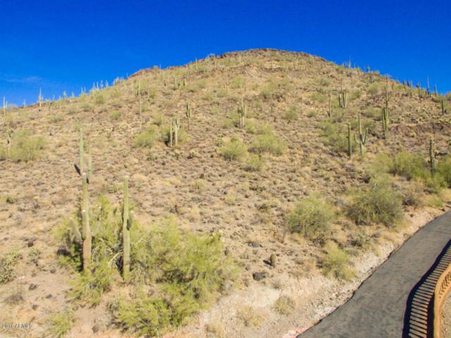 37040 N 31ST Avenue, Phoenix, AZ 85086 (MLS #5716738) :: Brett Tanner Home Selling Team