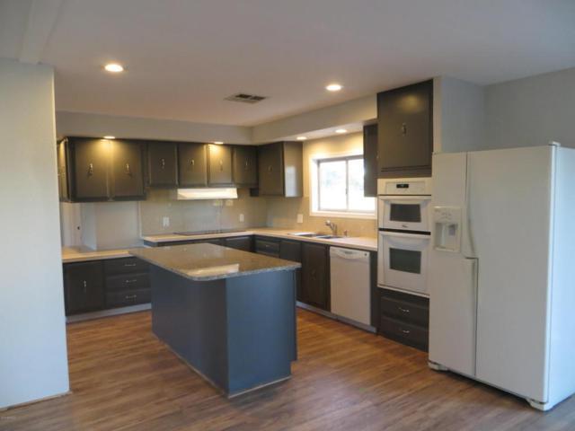 8135 E Cactus Drive, Mesa, AZ 85208 (MLS #5716744) :: Essential Properties, Inc.