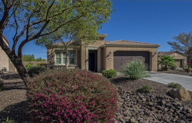 29179 N 128TH Lane, Peoria, AZ 85383 (MLS #5716776) :: Kortright Group - West USA Realty