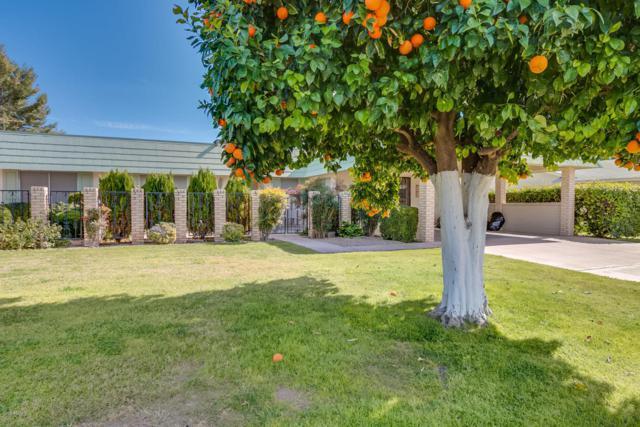 13657 N 103rd Avenue, Sun City, AZ 85351 (MLS #5716834) :: Kelly Cook Real Estate Group