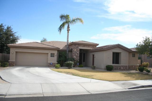 3697 N 146TH Drive, Goodyear, AZ 85395 (MLS #5717004) :: Kortright Group - West USA Realty