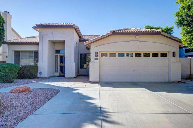 1143 W Tremaine Avenue, Gilbert, AZ 85233 (MLS #5717059) :: Kortright Group - West USA Realty