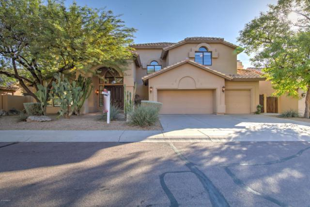 15215 S 20TH Place, Phoenix, AZ 85048 (MLS #5717149) :: The Everest Team at My Home Group