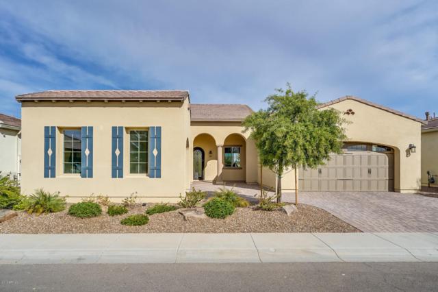 1302 E Corsia Lane, San Tan Valley, AZ 85140 (MLS #5717178) :: Yost Realty Group at RE/MAX Casa Grande