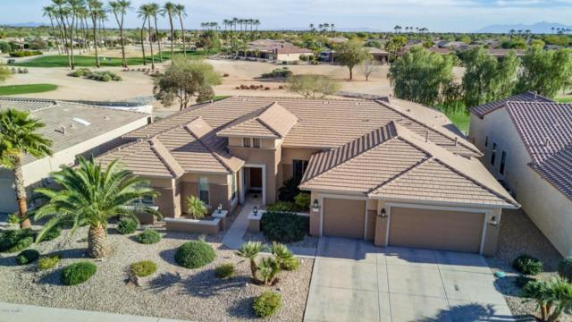 20917 N Grand Staircase Drive, Surprise, AZ 85387 (MLS #5717227) :: The Jesse Herfel Real Estate Group