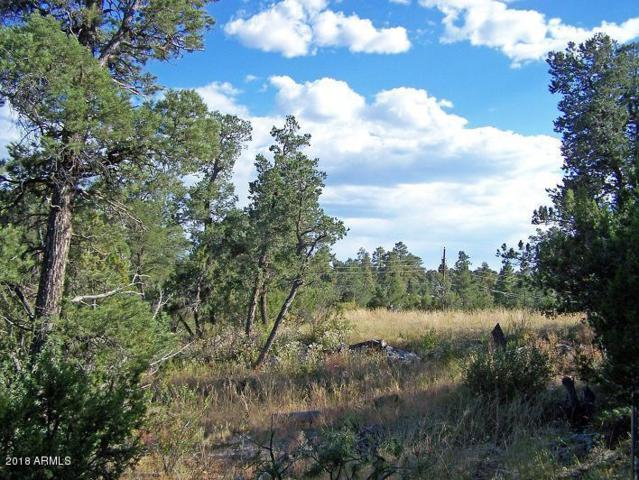 3117-21-25 Ranch Road, Overgaard, AZ 85933 (MLS #5717470) :: Brett Tanner Home Selling Team