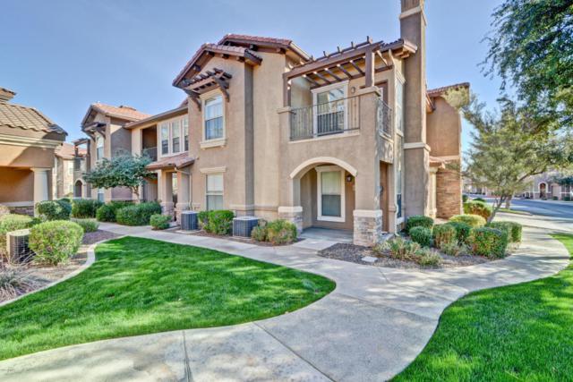 14250 W Wigwam Boulevard #2422, Litchfield Park, AZ 85340 (MLS #5717625) :: Private Client Team